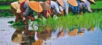 Un séjour au Vietnam vraiment génial